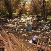 众所周知, 塑料对环境保护上有很大的影响, 它不仅造成视觉污染,同时隐性危害